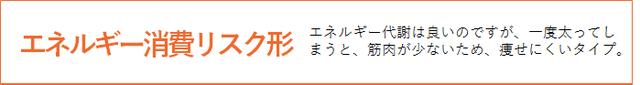 商材_DNA_004_図3_エネルギー消費リスク形.png